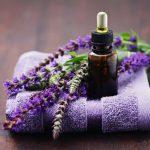 Những cách chữa ong đốt đơn giản và hiệu quả nhất